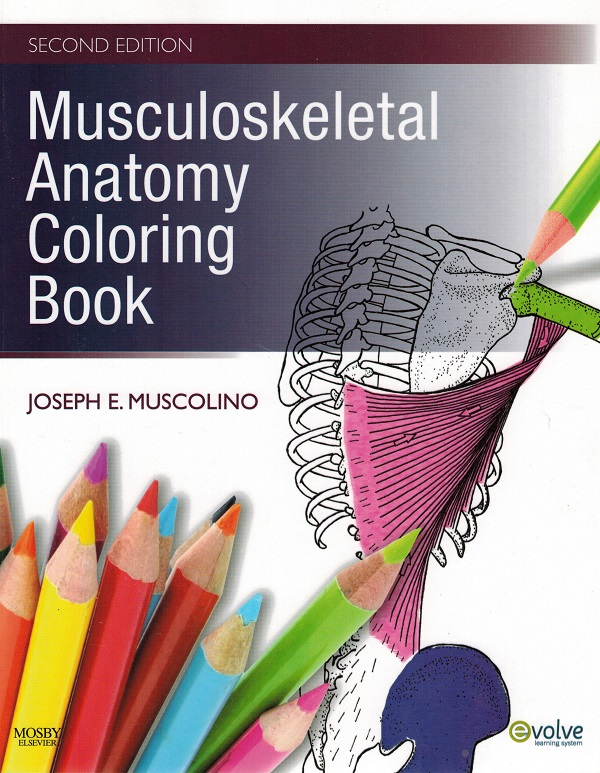 - Musculoskeletal Anatomy Coloring Book - Redwing Book Company